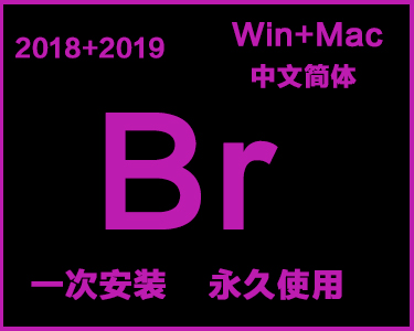 Br中文简体安装包win+mac系统